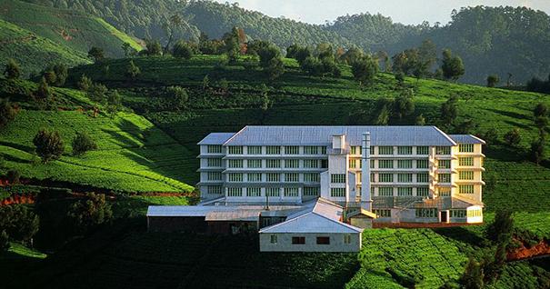 Музей чая в городке Хантана Шри-Ланка