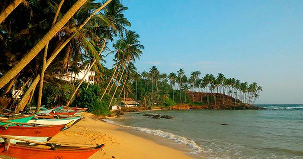 Пляж Мирисса (Шри-Ланка)